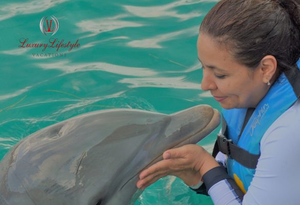 Jamaica – Dolphin Cove Negril Full Day with Dolphin Swim