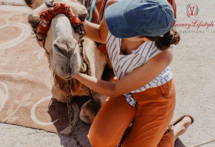 Cabo San Lucas – Camel Safari