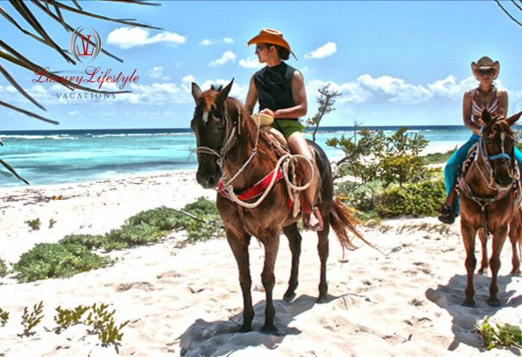 Puerto Morelos – Horseback Riding and Cenote Swim